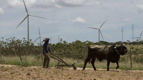 Los socios de Iberdrola en Neoenergia cancelan su salida a Bolsa