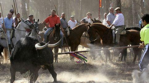 La Junta de Castilla y León deniega a Tordesillas celebrar el Toro de la Vega