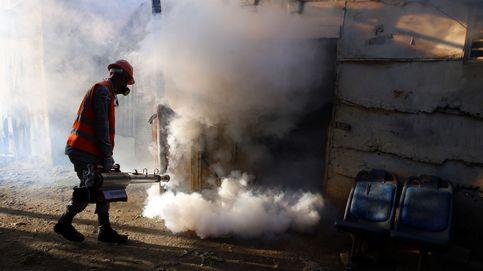 Salud controlará a las embarazadas que viajen a países afectados por Zika