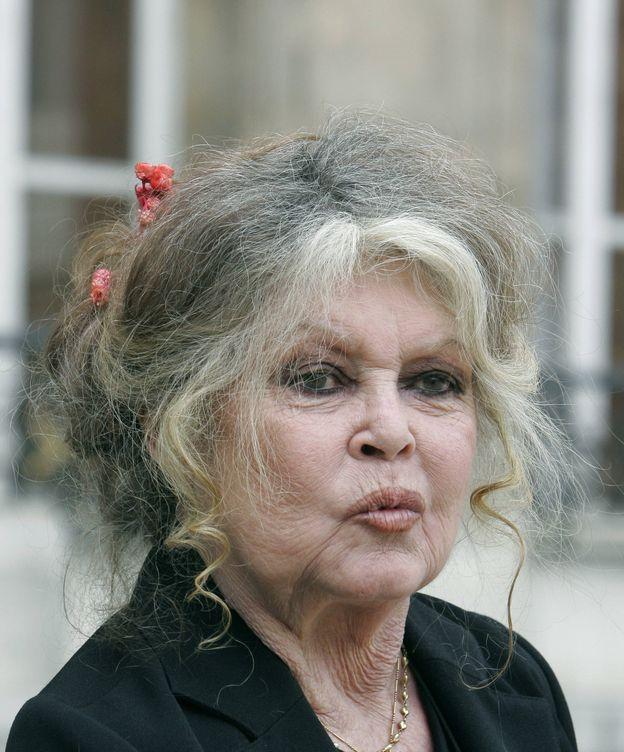 Foto: La actriz Brigitte Bardot en una imagen de archivo. (Gtres)