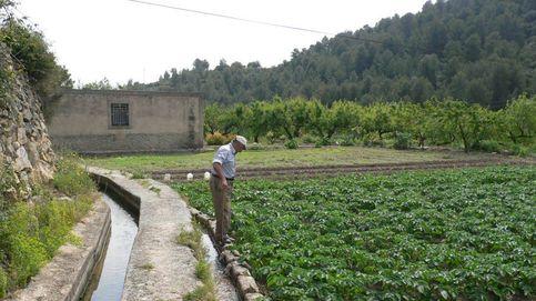 Adiós a regar con agua de mar: Castellón recupera 579 millones de litros en 2 años