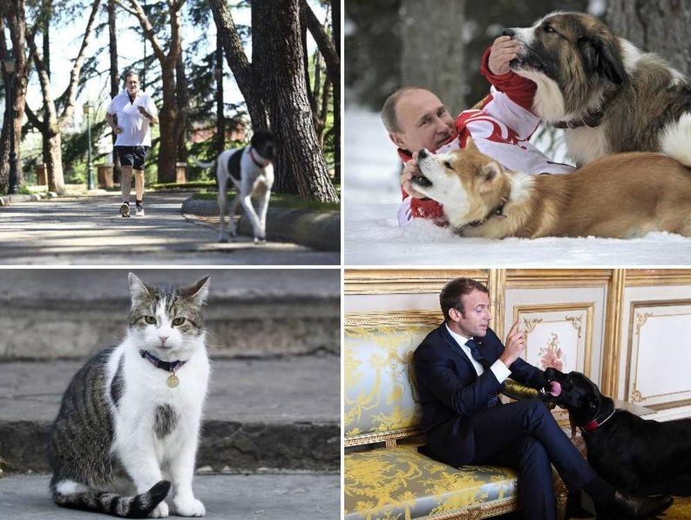Foto: Rajoy, Putin o Macron son algunos de los mandatarios que tienen mascotas.