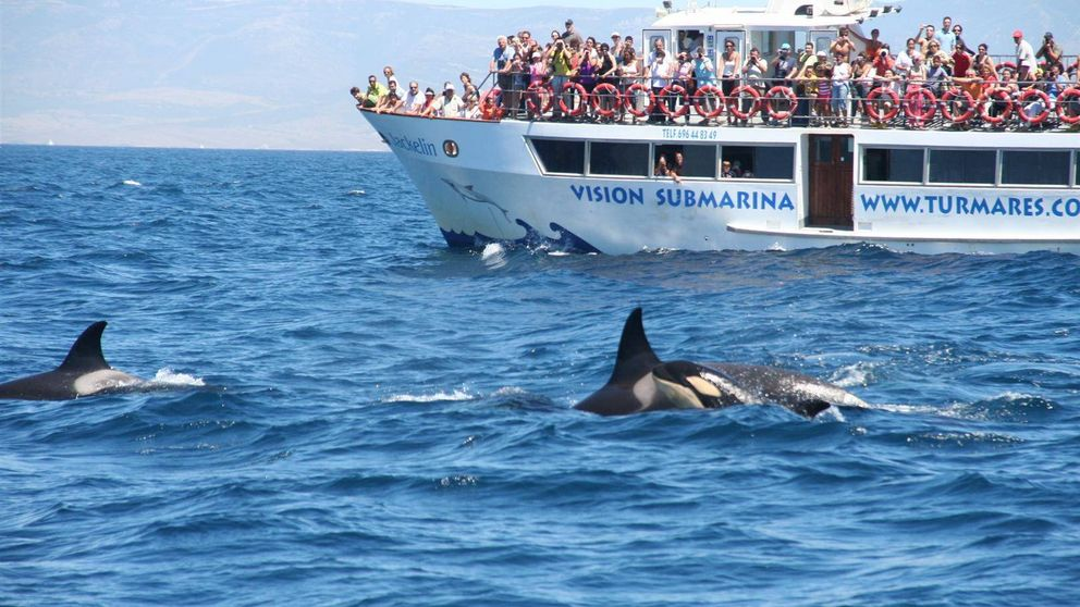 El negocio del turismo de naturaleza en España: 3.700 millones por ganar