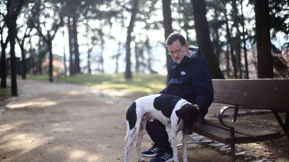 Foto: El presidente del Gobierno, Mariano Rajoy, con su perro en los jardines de La Moncloa. (EFE)