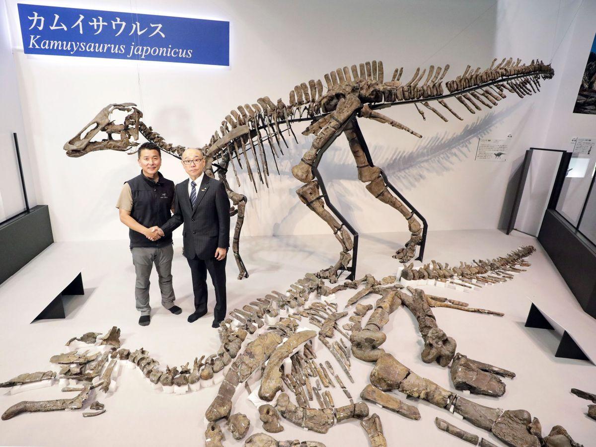 Enfermedades Raras Encuentran Una Enfermedad Rara Humana En Los Fósiles De Un Dinosaurio