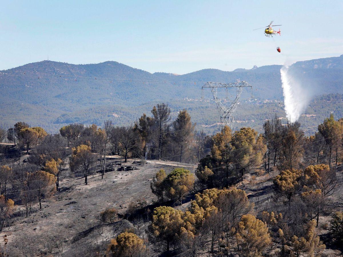 Foto: Un hidroavión trabaja para extinguir el incendio. (EFE)