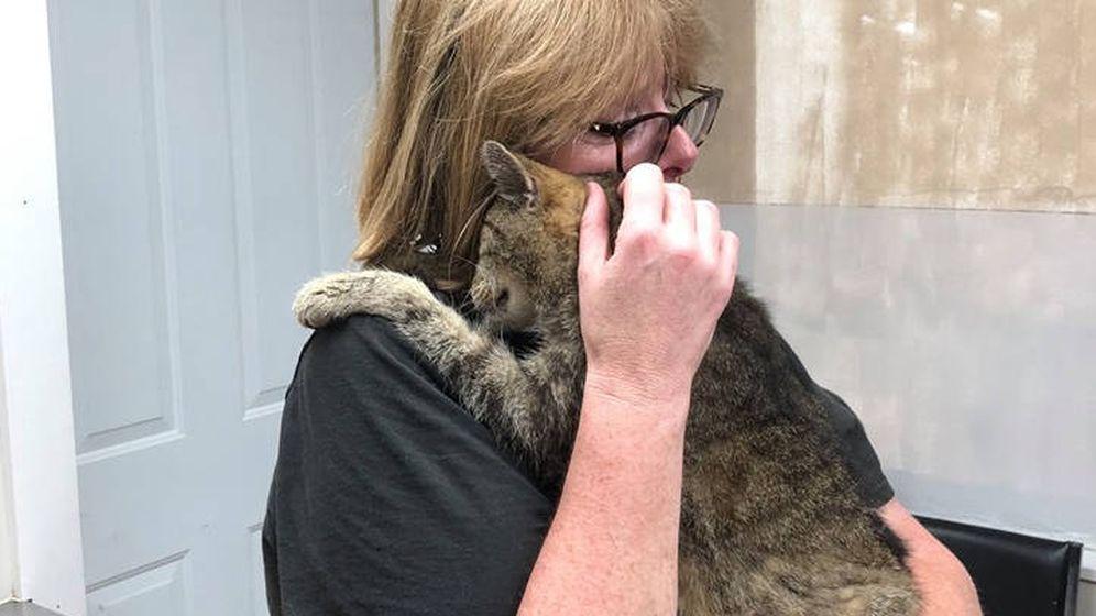 Foto: Maggie, la dueña de Tiger, pudo reunirse con su gato 11 años después de su desaparición (Foto: Facebook)