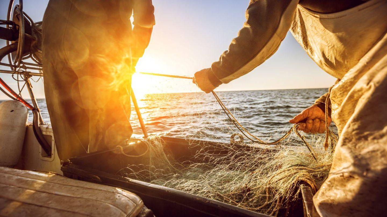 La pesca debe contribuir a la conservación de los mares (MSC)