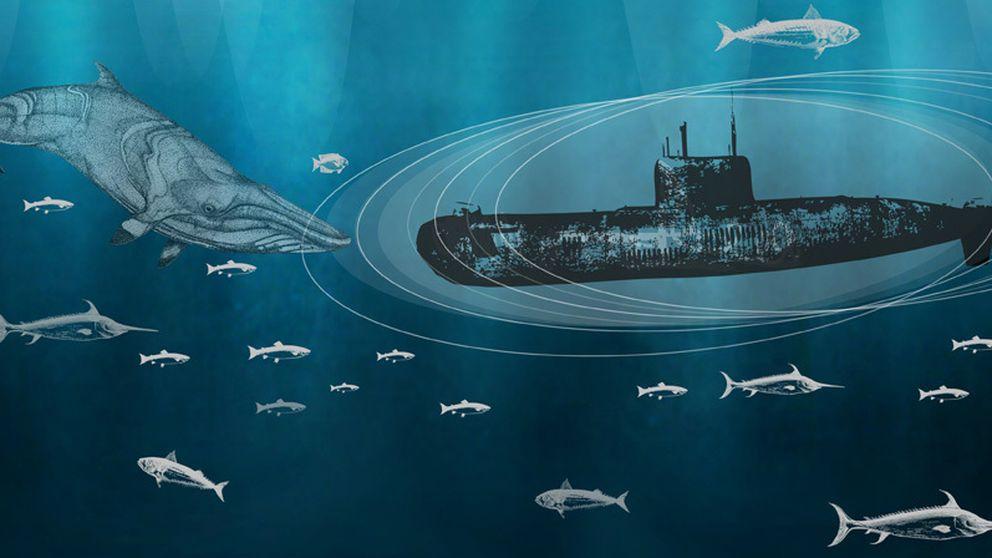 La supercavitación marina podría ser una invitación al desastre