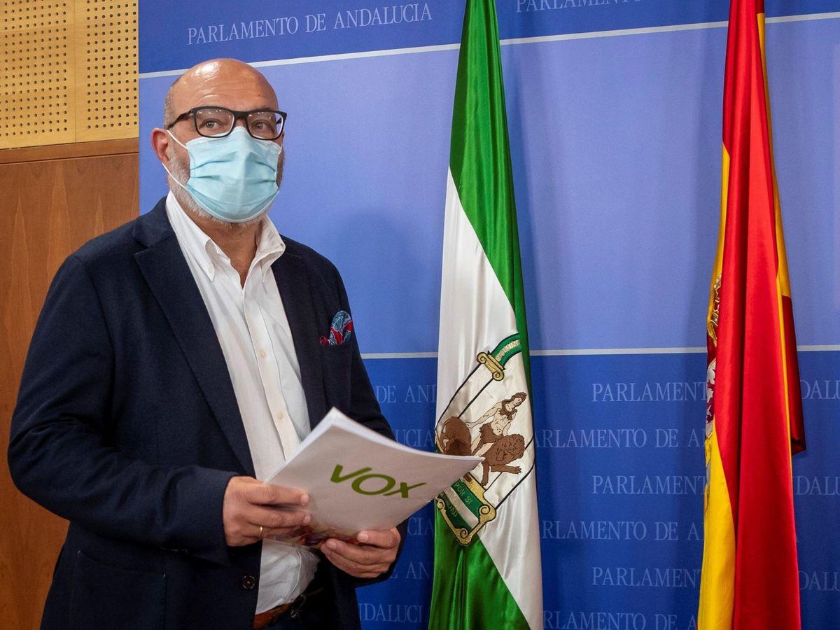 Foto: El portavoz parlamentario de Vox en Andalucía, Alejandro Hernández. (EFE)