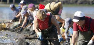 Post de Miles de mariscadores abandonan sin opción a compensaciones: