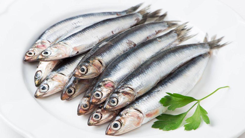 ¿Pescado azul o pescado blanco? Cómo diferenciarlos y cuáles son sus beneficios