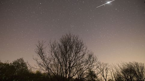 Un cometa pudo destruir la ciudad que 'descubrió' la agricultura hace 13.000 años