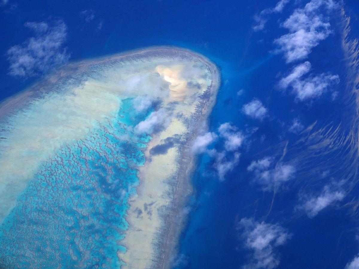 Foto: Se vuelve a considerar que la Gran Barrera de Coral no está 'en peligro'. Reuters