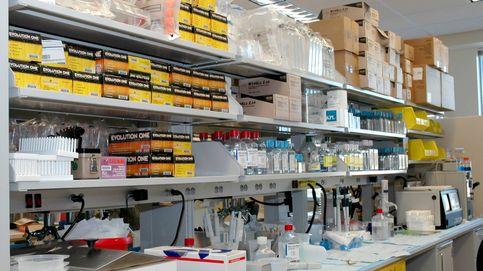 ONG denuncia maltrato animal en el laboratorio Vivotecnia de Madrid