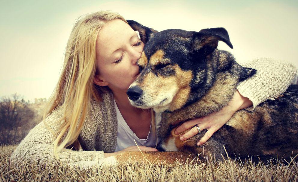Foto: Los perros nos dicen mucho sobre la personalidad de sus dueños. (iStock)