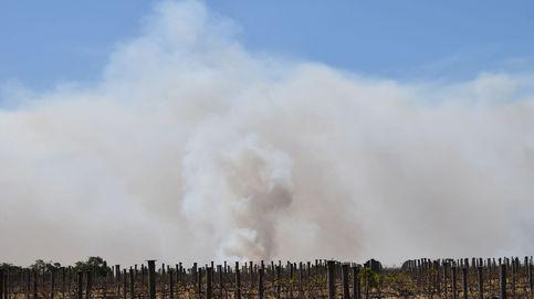 ¿El humo de un incendio es igual de peligroso que el humo del tabaco?
