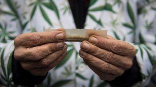 ¿Por qué el alcohol sí y el cannabis no?