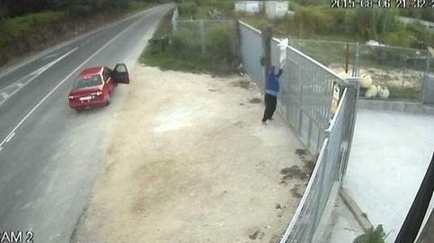 El vídeo en el que dos hombres abandonan a un perro enciende la Red