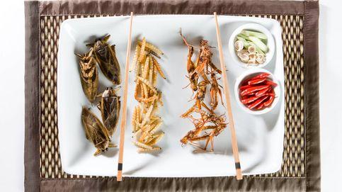 Insectos y antioxidantes: sacrificios por una salud de hierro