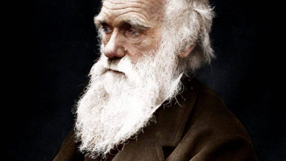 El día que Charles Darwin quiso descubrir por qué las morenas ligan más