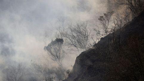 Este año prepara tus pulmones: el peligro del humo de los incendios forestales