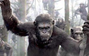 El hombre es un mono para el hombre