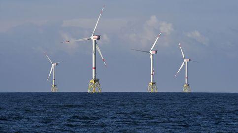 Brotes verdes en el mercado eléctrico: las renovables quieren crecer sin 'Papá Estado'
