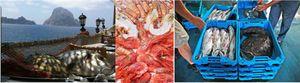 Verano de costa a costa: 70 pistas gastronómicas