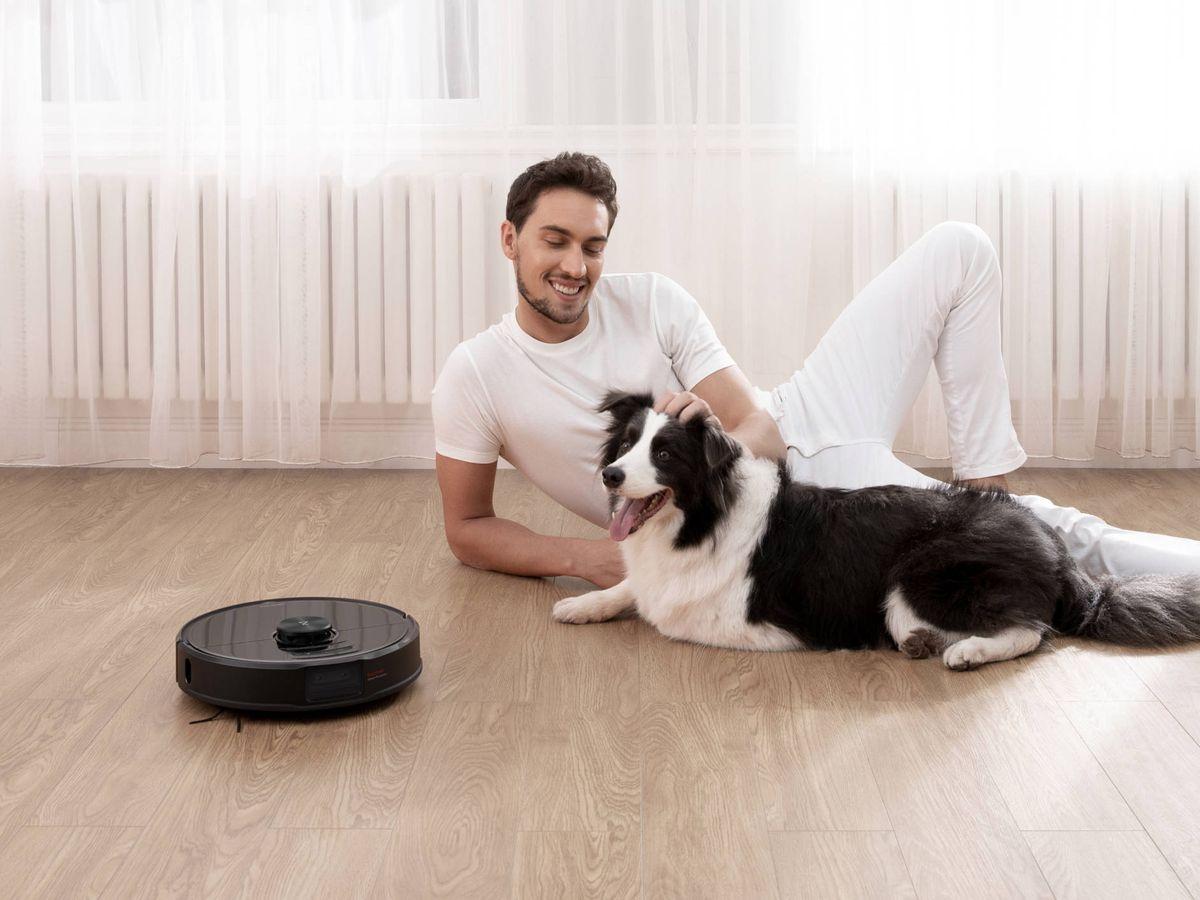 Foto: Las mascotas nos alivian el estrés. Foto: Cortesía
