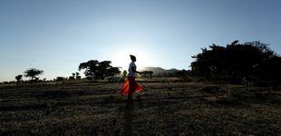 Post de Etiopía bate el récord del mundo de plantación de árboles en un solo día