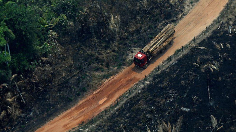 Foto: Camión cargado de troncos cortados en la zona de Boca do Acre en Amazonas, Brasil. (Reuters)
