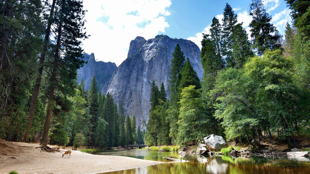 Foto: Parque Nacional de Yosemite, donde desaparecen muchas personas al año en Estados Unidos. (iStock)