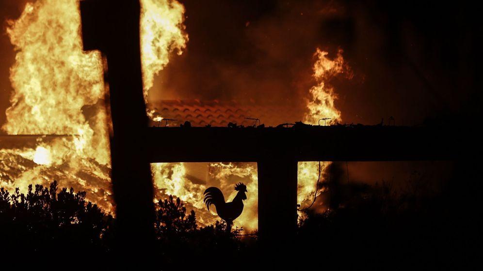 Foto: Los ola de incendios que está arrasando Grecia, en 50 fotos
