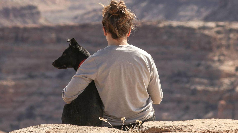 Ideas para un verano 'de perros'. (Patrick Hendry para Unsplash)