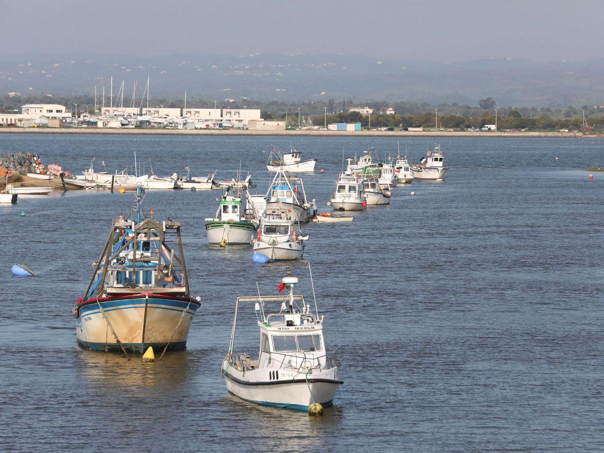 Foto: Embarcaciones en Ayamonte. (EFE)