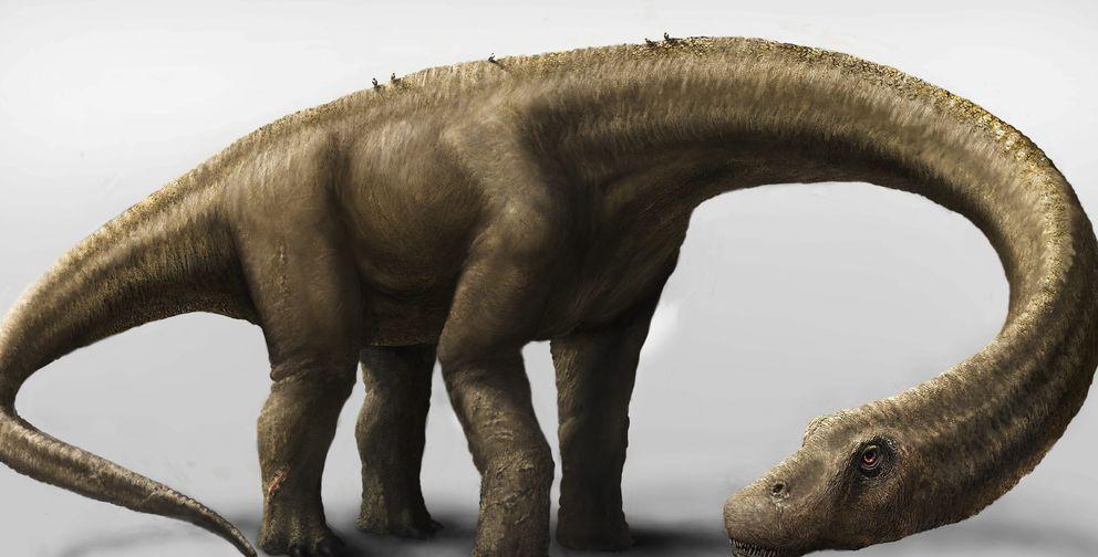 Descubren un dinosaurio que pesaba tanto como una manada de elefantes