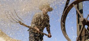 """Los precios de los alimentos viven una situación """"alarmante"""", según la FAO"""