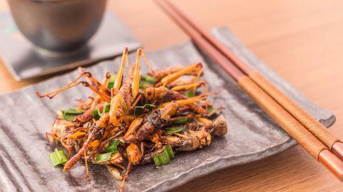 Alimentación del futuro: los insectos han llegado (para quedarse)