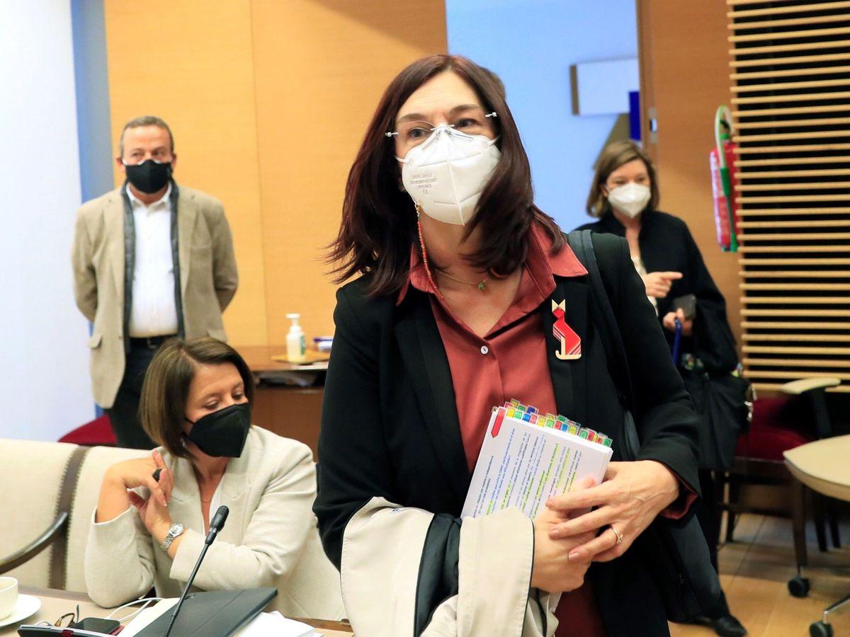 Foto: La presidenta de la Comisión Nacional de los Mercados y la Competencia, Cani Fernández. (EFE)