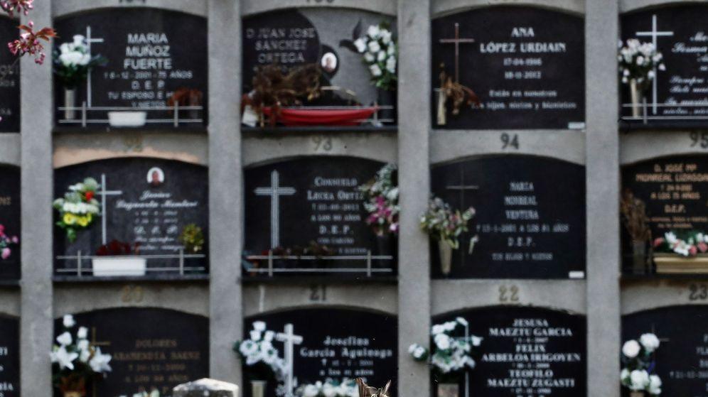 Foto: A 1 de mayo, las muertes confirmadas por covid-19 en España eran 25.100. (EFE)