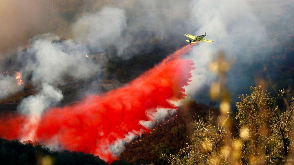 Foto: Incendio en la aldea de Villagordo, en Sevilla, a mitad de agosto de 2019. (EFE)